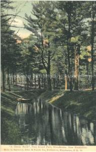 "Postcard ""A Shady Nook,"" Pine Island Park, John B. Varick Co. Publishers, Manchester Historic Association Collection"