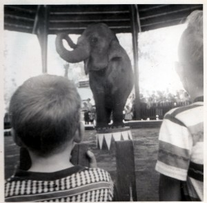 1952 photograph of my brother Pete Webster watching the elephant act. Seemed appropriate to post in this article. Copyright janice Brown.