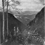 The trail down the Eastern Slope of Moosilaukee, page 35, from Vacation tramps in New England highlands, by Allen Chamberlain