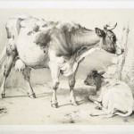 """The Miriam and Ira D. Wallach Division of Art, Prints and Photographs: Print Collection, The New York Public Library. """"Cow and calf."""" The New York Public Library Digital Collections. 1839."""