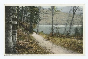 Mountain Path, Franconia Notch, NH, Detroit Publishing Company postcards, Photography Collection, Miriam and Ira D. Wallach Division of Art, Prints and Photographs, NYPL Digital Library